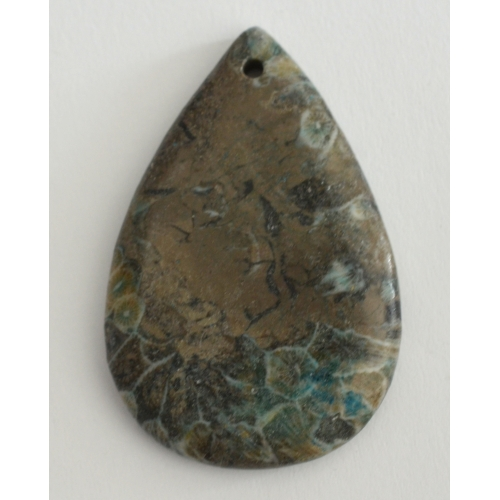 Coral Fossil Pendant Bead